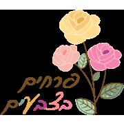 פרחים בצבעים – חנות פרחים בגבעת שמואל